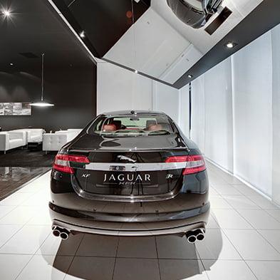 4_Jaguar_393x393px